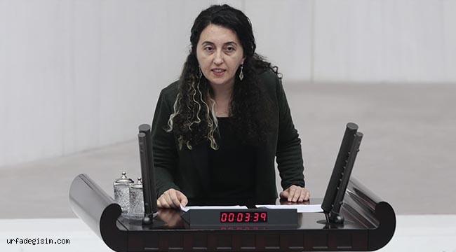 HDP'nin MYK'de görev dağılımı yapıldı