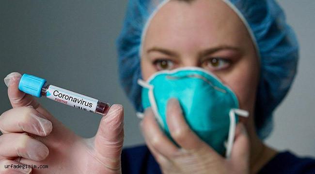 Koronavirüs, alerjisi olan hastaları nasıl etkiler?