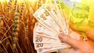 Tarımsal kredi kullanım esasları açıklandı
