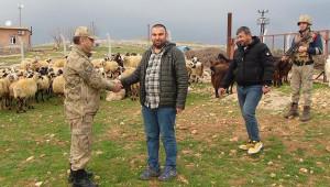 Urfa'da 120 hayvanı çalan hırsızlar tutuklandı