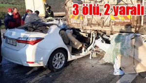 Urfa TİGEM görevlisi kazada hayatını kaybetti
