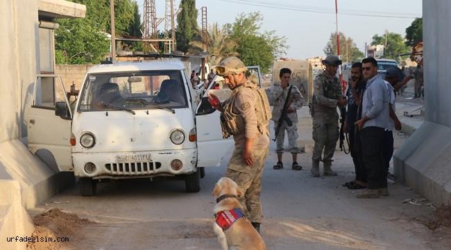 Barış Pınar'ında güvenlik önlemleri artırıldı