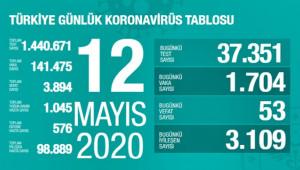 Türkiye'de virüsten can kaybı 3 bin 894