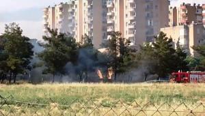 Çocuklar ağaçlık alanı ateşe verdi