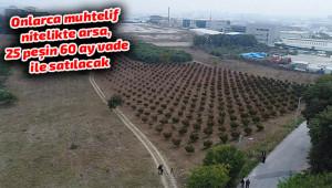 TOKİ'nin arsaları Urfa'da açık arttırma ile satışa çıkıyor