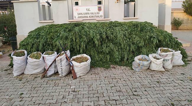 Uyuşturucu operasyonu:3 tutuklama