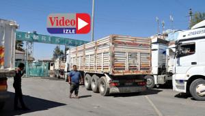 Suriye'ye transit geçişler devam ediyor