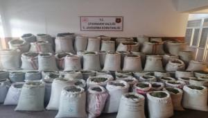 1 ton 207 kilo esrar ele geçirildi