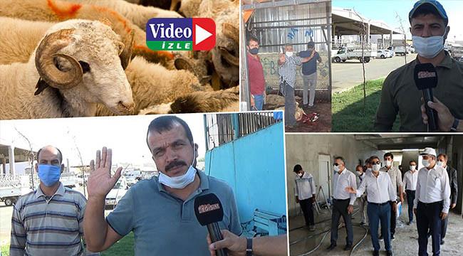 Adakçılar Büyükşehir'den çözüm istiyor