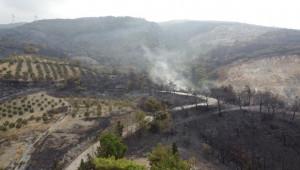 Hatay'da yanan alanlar havadan görüntülendi