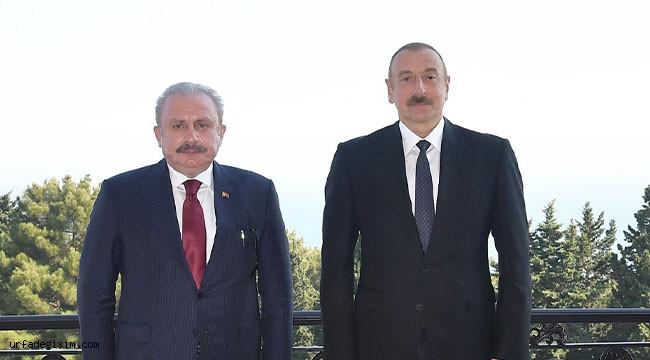 Mustafa Şentop, Aliyev ile görüştü
