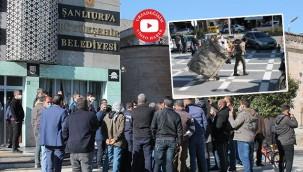 Hurdacılar belediye önünde isyan etti