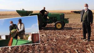 Makarnalık sert buğday ekimi başladı
