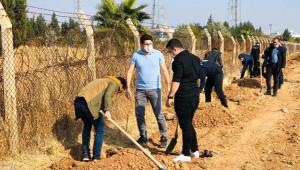 Suriye sınırına fidanlar dikildi