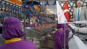 Suudi Arabistan, hayvani ürün ithalatını yasakladı