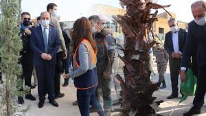 Vali Erin Suriye'de ağaç dikti