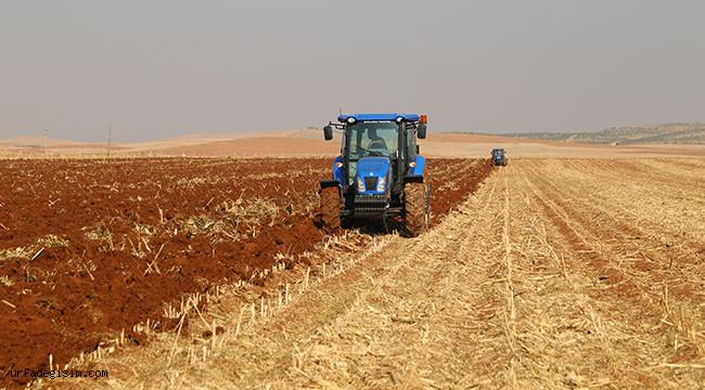 Yağmurlar tahıl ekimini hızlandırdı