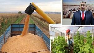 Tarımsal üretim artarak devam etti