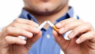 Pandemide sigara içme oranları azaldı
