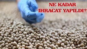 Türkiye'nin bakliyat ihracatı arttı!