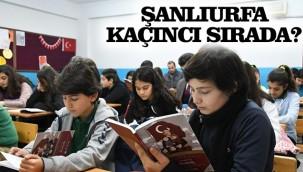 Şanlıurfa'da okur yazar oranı kaç?