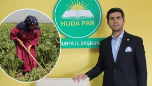 Tarım işçilerinin sorunları yerinde tespit edilecek