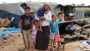 Çadırda yaşayan Urfalı aileye şok fatura!