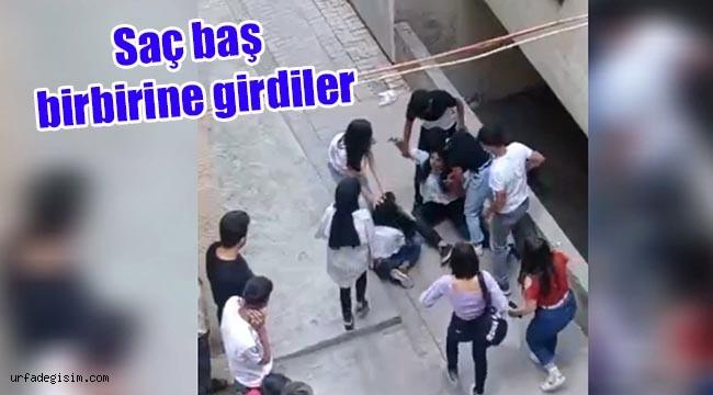 Urfa'da kızlar kavga etti erkekler izledi