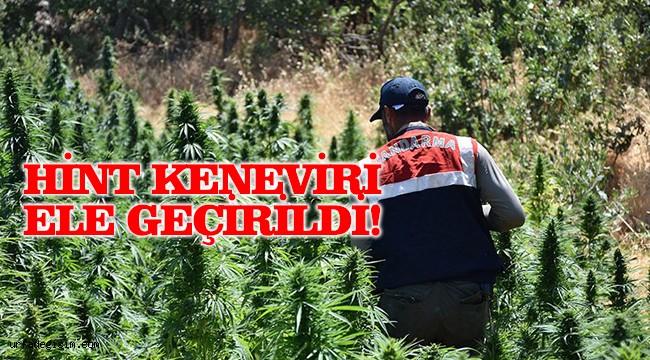 Uyuşturucu operasyonunda 3 kişi tutuklandı!