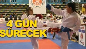 Karate Şampiyonası Şanlıurfa'da başladı!
