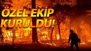 Orman yangınlarının çıkış sebebi araştırılacak!