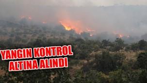 Orman yangını Nizip'e sıçradı