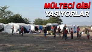 Urfalı işçiler çadırlarda aşılandı!