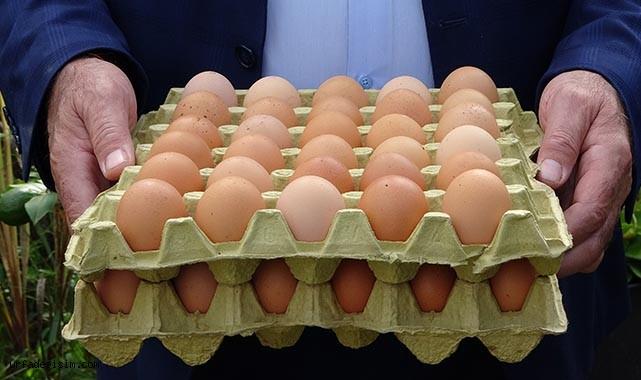 Yumurtanın fiyatı 2 liraya yükselebilir!